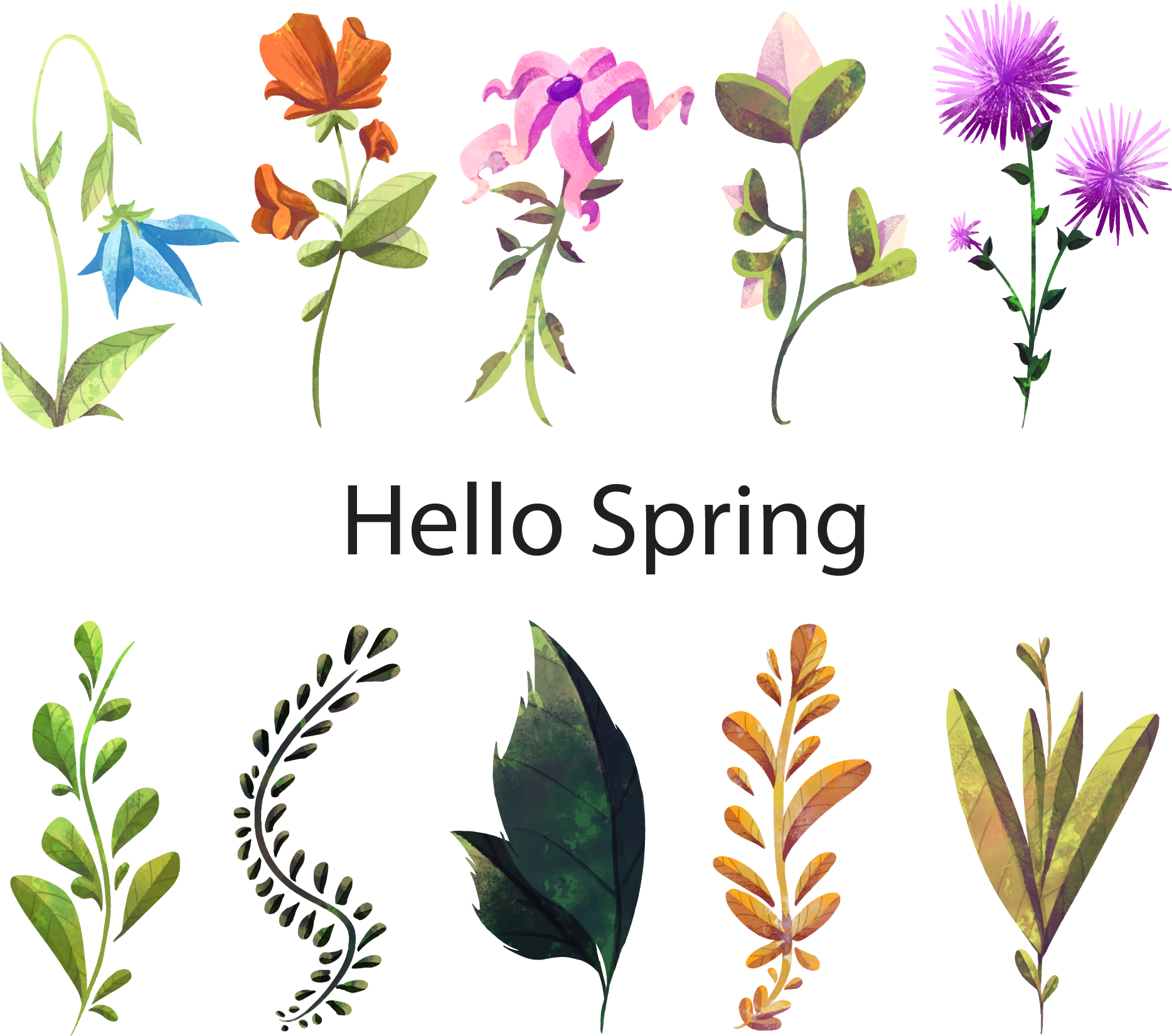 Spring flower watercolor clipart clipart Floral design Watercolor painting Flower Plant - Hello spring ... clipart