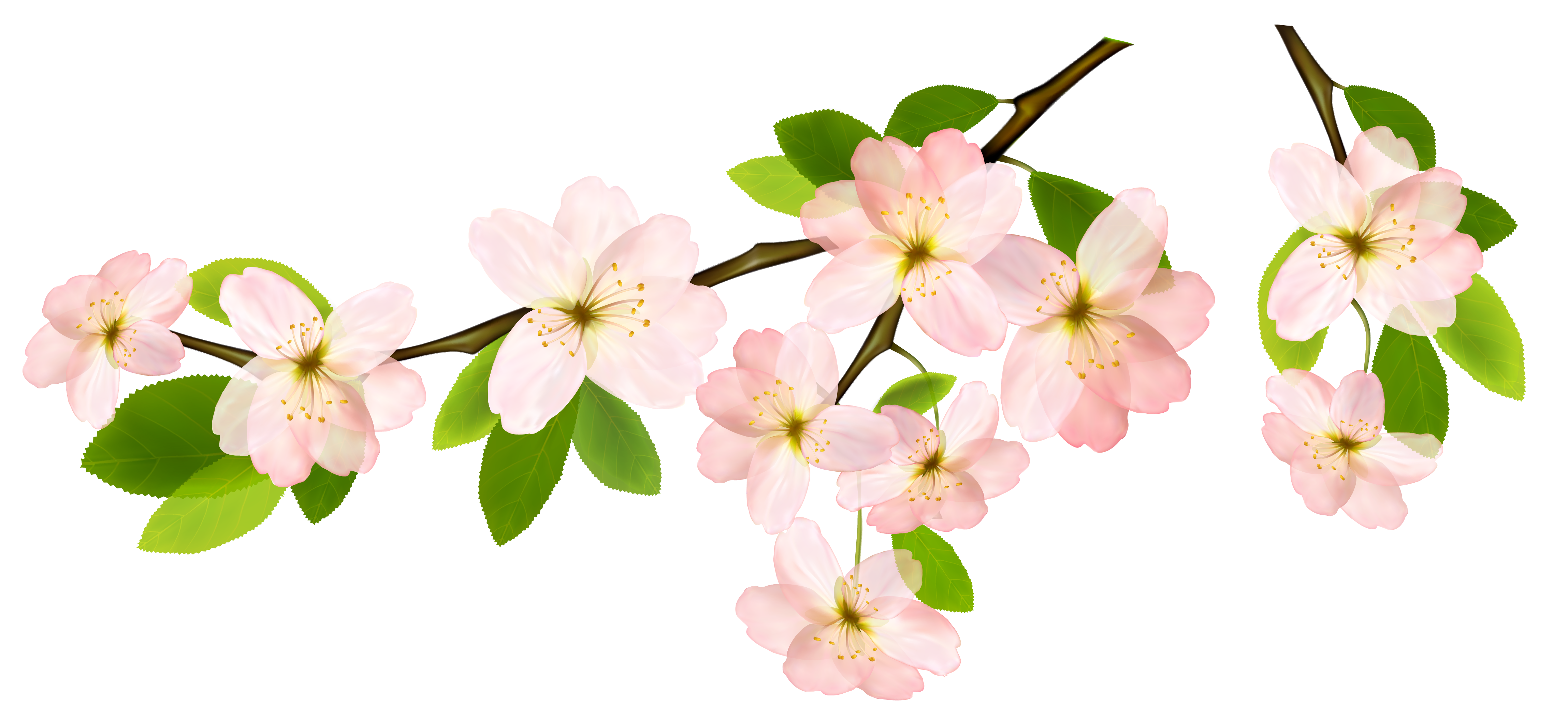 Springtime with cross clipart royalty free stock Spring Branch PNG Clipart Picture | leaves & branches | Pinterest ... royalty free stock