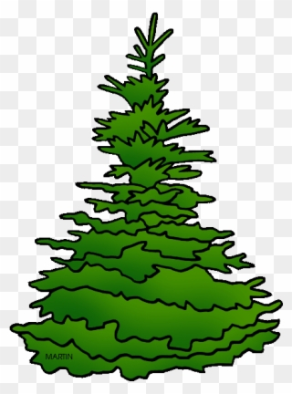 Spruce clipart black and white library Free PNG Spruce Tree Clip Art Download - PinClipart black and white library