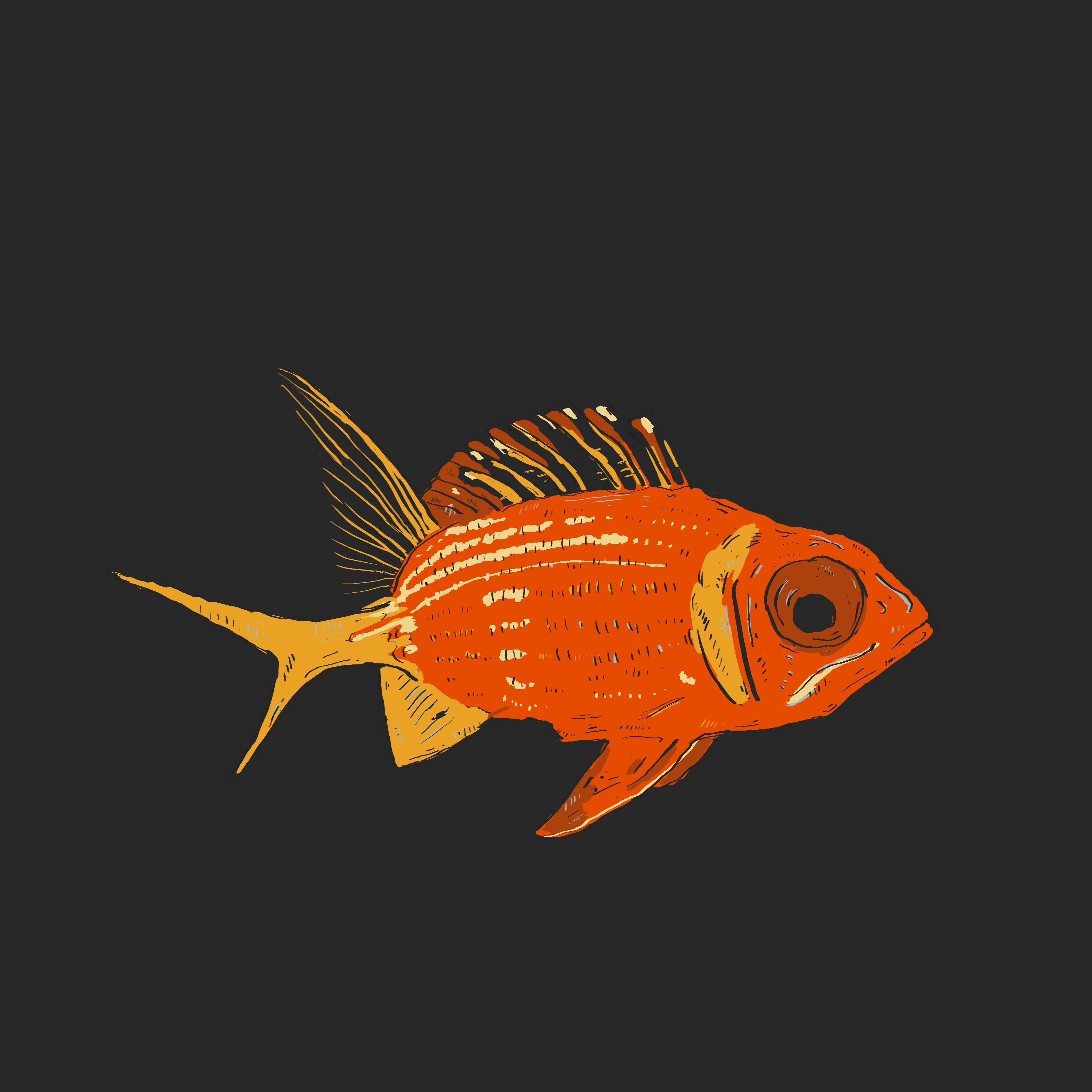 Squirrelfish clipart clipart download Squirrelfish 365 Animals | Pictureicon clipart download