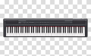 Stage with keyboard clipart library Musical instrument Musical keyboard , Musical instruments ... library
