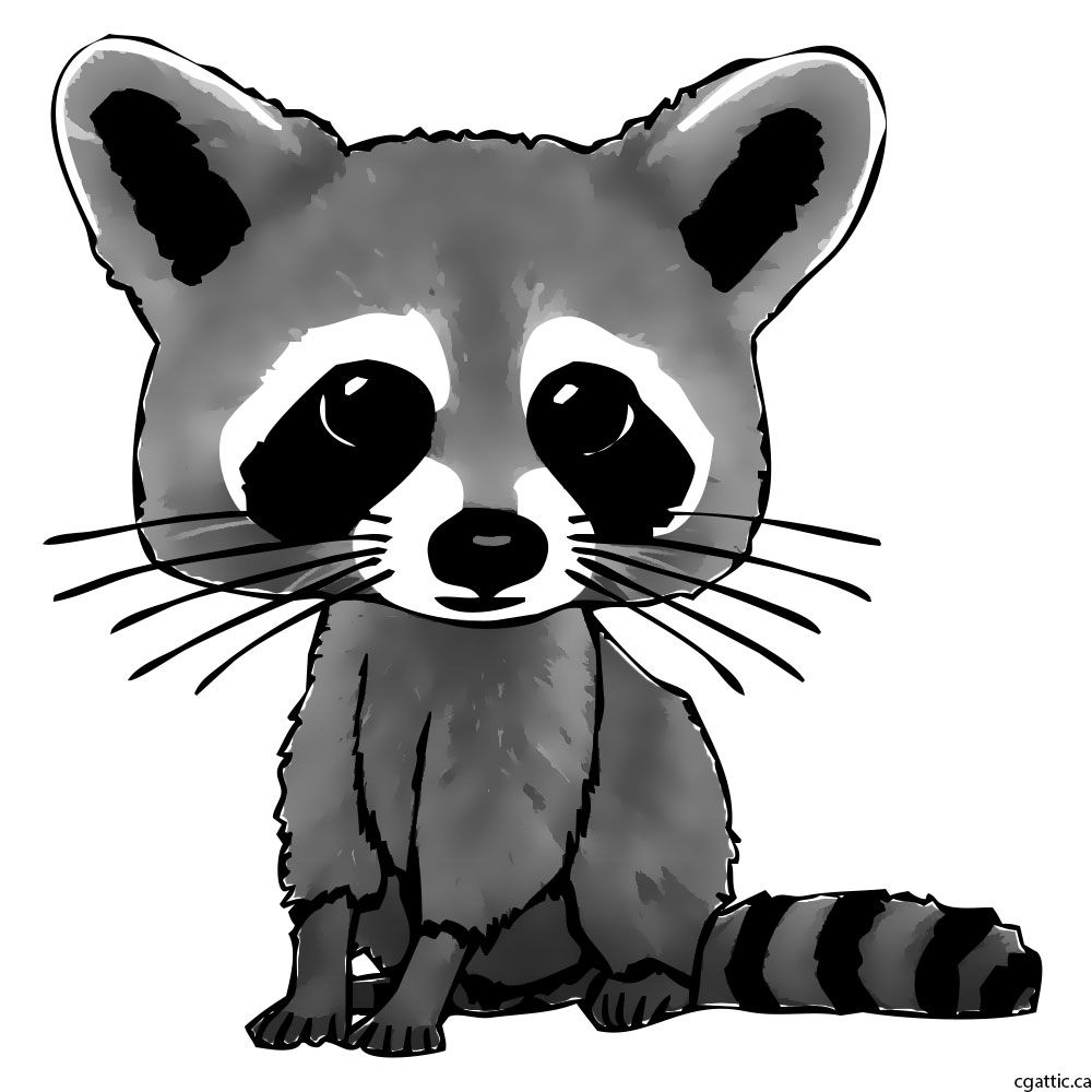 Standing up racoon clipart black and white jpg library library Cartoon Raccoon Drawing in 4 Steps With Photoshop | BABY in ... jpg library library
