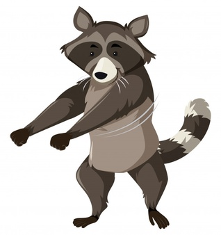 Standing up racoon clipart black and white picture royalty free library Raccoon Vectors, Photos and PSD files | Free Download picture royalty free library