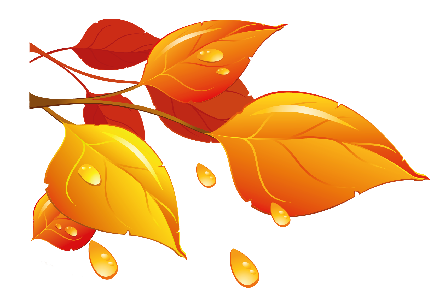 Star fall clipart svg transparent Transparent Autumn Leaves PNG Clipart | Gallery Yopriceville - High ... svg transparent