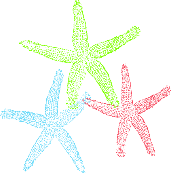 Star fish clipart picture free Starfish Public Domain Clipart picture free