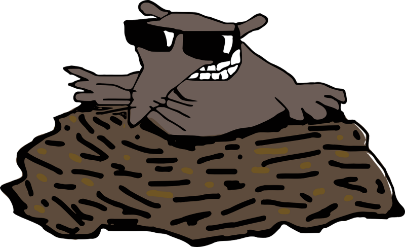Star nosed mole clipart svg transparent library The truth about hairy moles - and why they grow svg transparent library