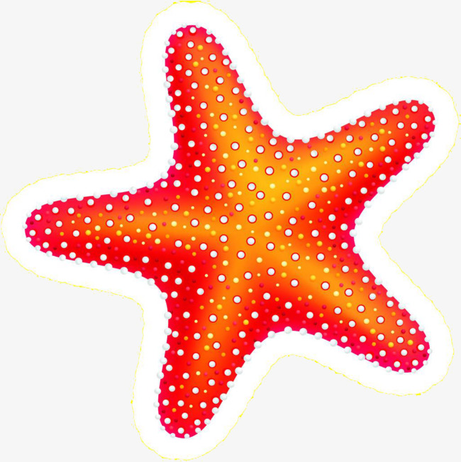 Starfish clipart graphics image royalty free Download Free png Orange red Starfish, Starfish Clipart ... image royalty free
