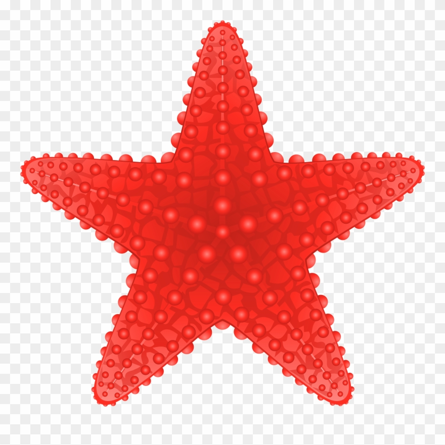 Starfish clipart transparent background image free Starfish Transparent Png Clip Art Image Beach Clipart ... image free