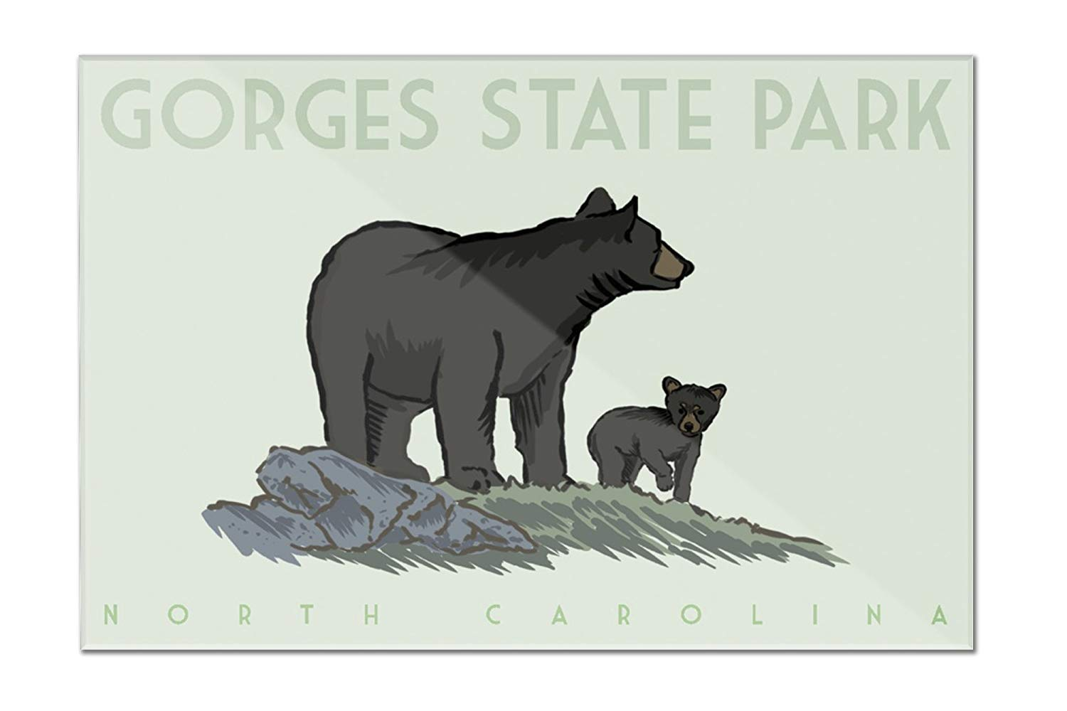 State bear north carolina clipart png transparent library Amazon.com: Gorges State Park, North Carolina - Black Bear ... png transparent library