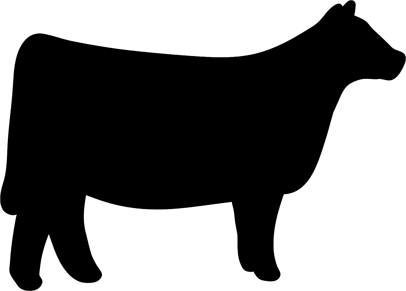 Steer calf clipart 4h png library stock Cow clipart heifer #9 | Pictures | Cow clipart, Show cattle ... png library stock
