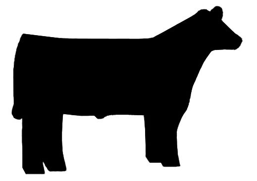 Steer calf clipart 4h svg black and white download Pin by Nicole Hill on Country Life | Showing livestock, Show ... svg black and white download