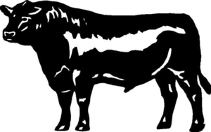 Steer clipart images vector library download Angus Steer Clipart | Free Images at Clker.com - vector clip ... vector library download