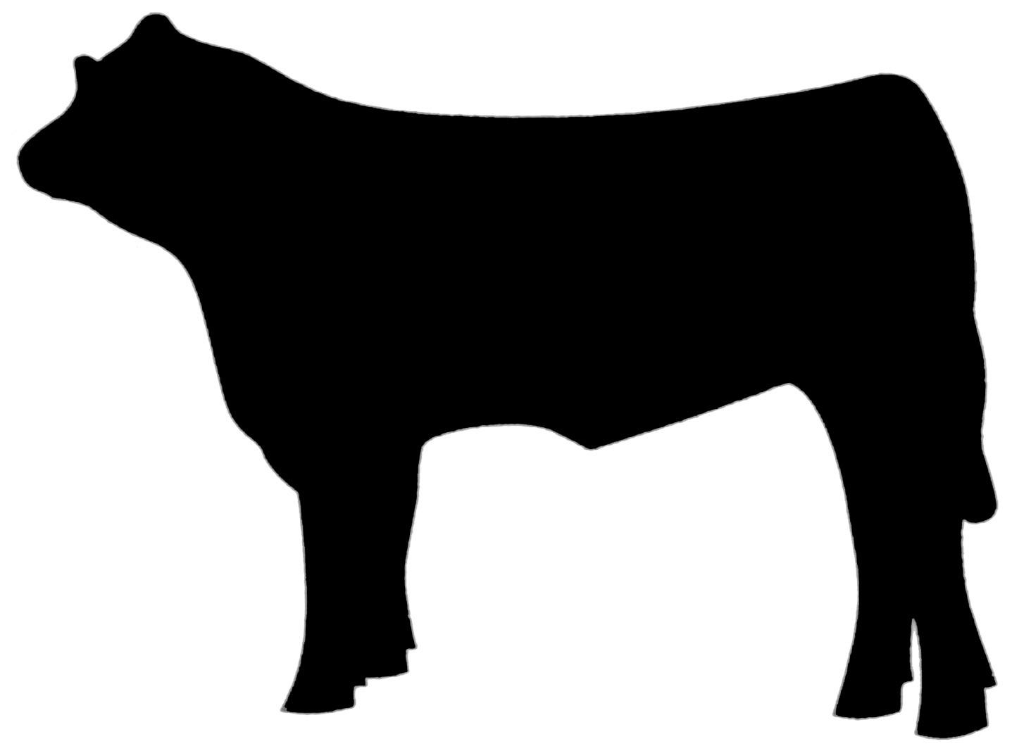 Steer clipart images image library download Steer Clipart | Free download best Steer Clipart on ... image library download