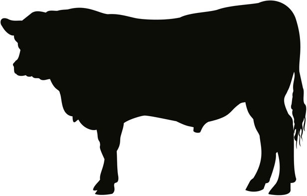 Steer clipart images banner free library Steer clipart 4 » Clipart Portal banner free library