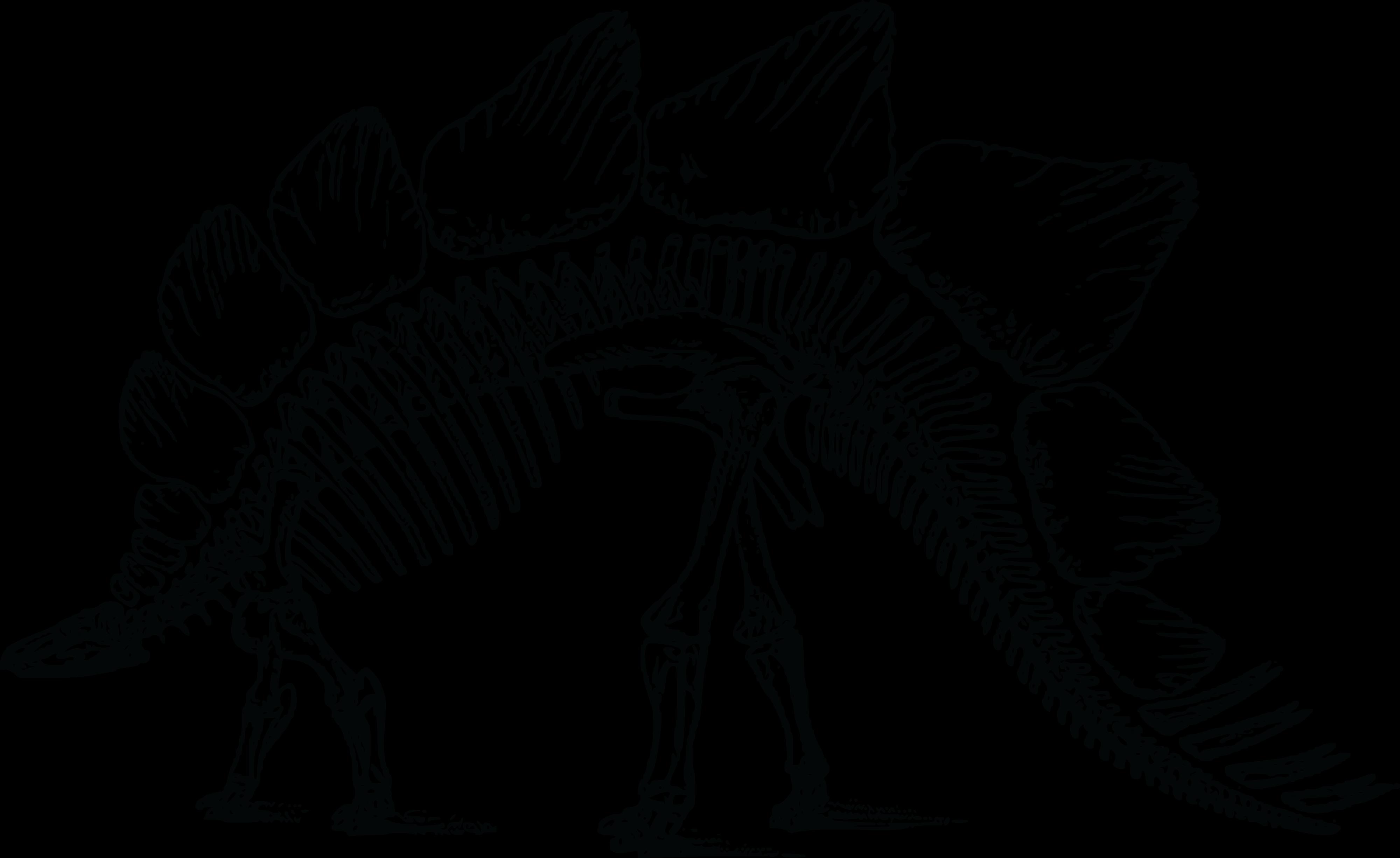 Stegosaurus skeleton silhouette clipart vector freeuse download Stegosaurus Bone Wars Triceratops Skeleton - Skeleton png ... vector freeuse download