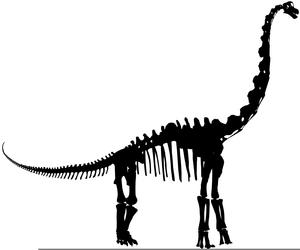 Stegosaurus skeleton silhouette clipart clip art freeuse Dinosaur Silhouette Clipart | Free Images at Clker.com ... clip art freeuse