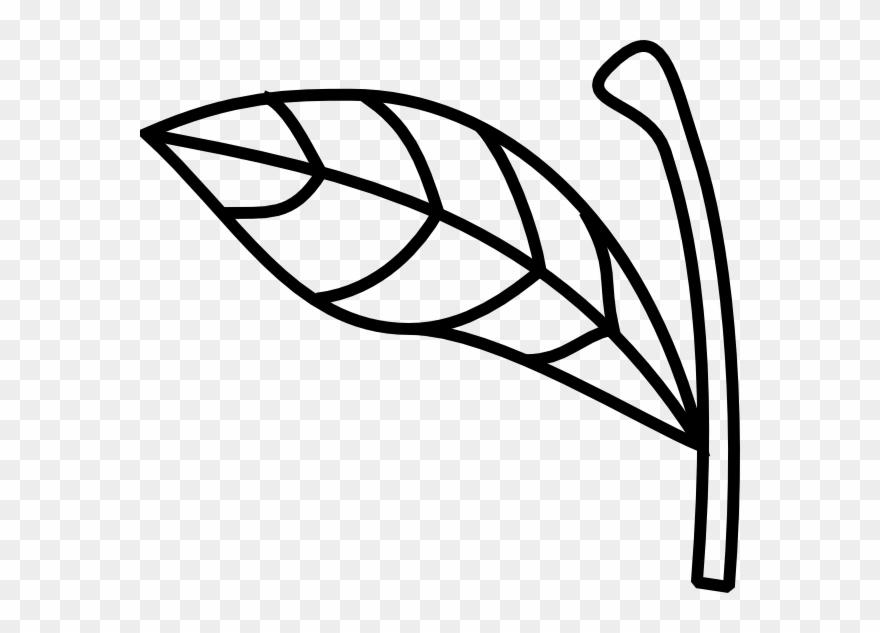 Stem leaf clipart jpg royalty free Apple Stem Leaf Clip Art - Apple Stem Clipart - Png Download ... jpg royalty free