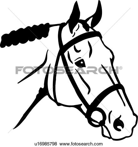 Stock horse head clipart picture transparent download Clip Art of , animal, horse, pony, head, u13644108 - Search ... picture transparent download