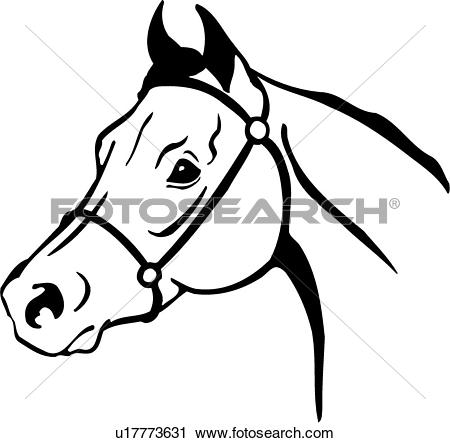 Stock horse head clipart banner freeuse download Clip Art of , animal, horse, pony, head, u13644108 - Search ... banner freeuse download