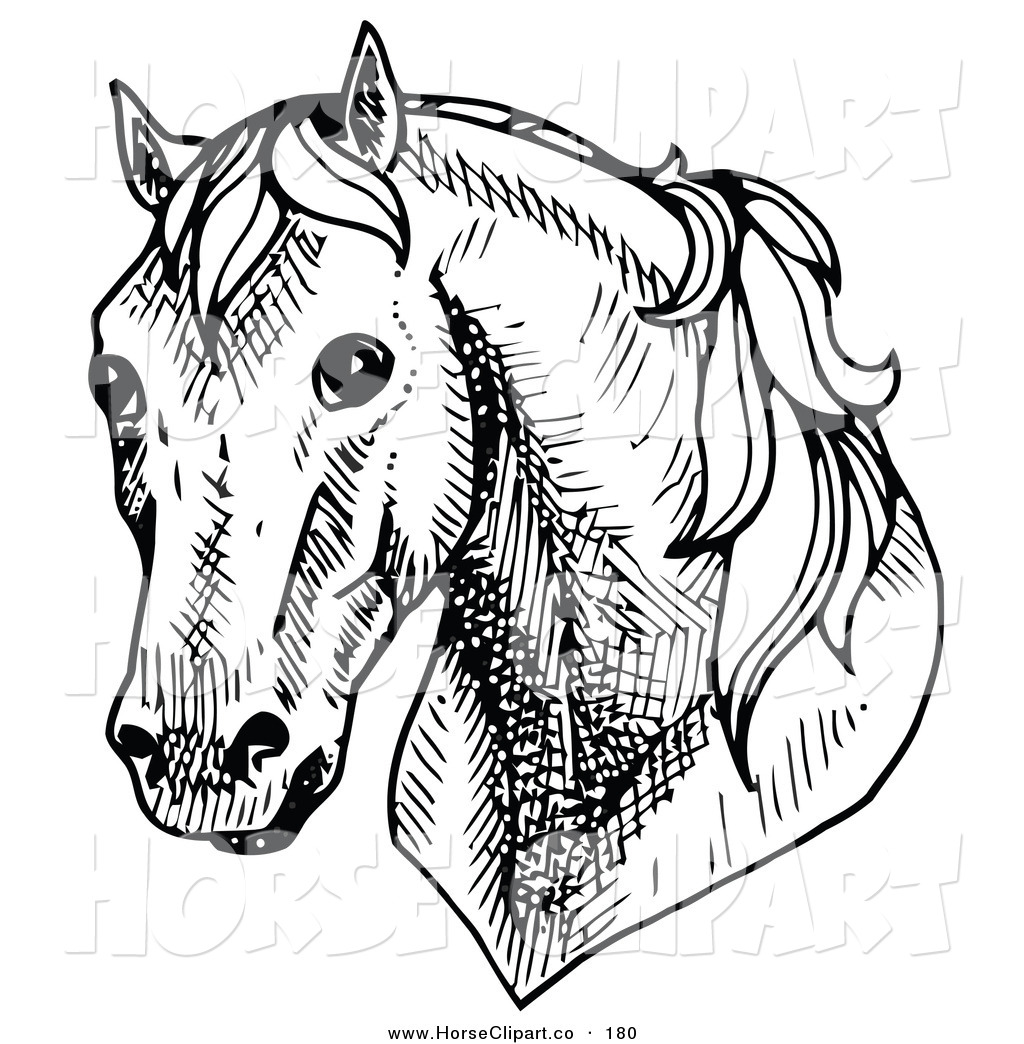 Stock horse head clipart clipart stock Royalty Free Rubber Stamp Design Stock Horse Designs clipart stock