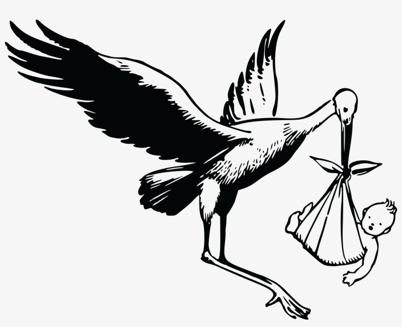 Stork clipart black and white