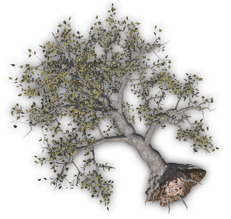 Storm tree clipart vector freeuse 28+ Collection of Uprooted Tree Clipart   High quality, free ... vector freeuse