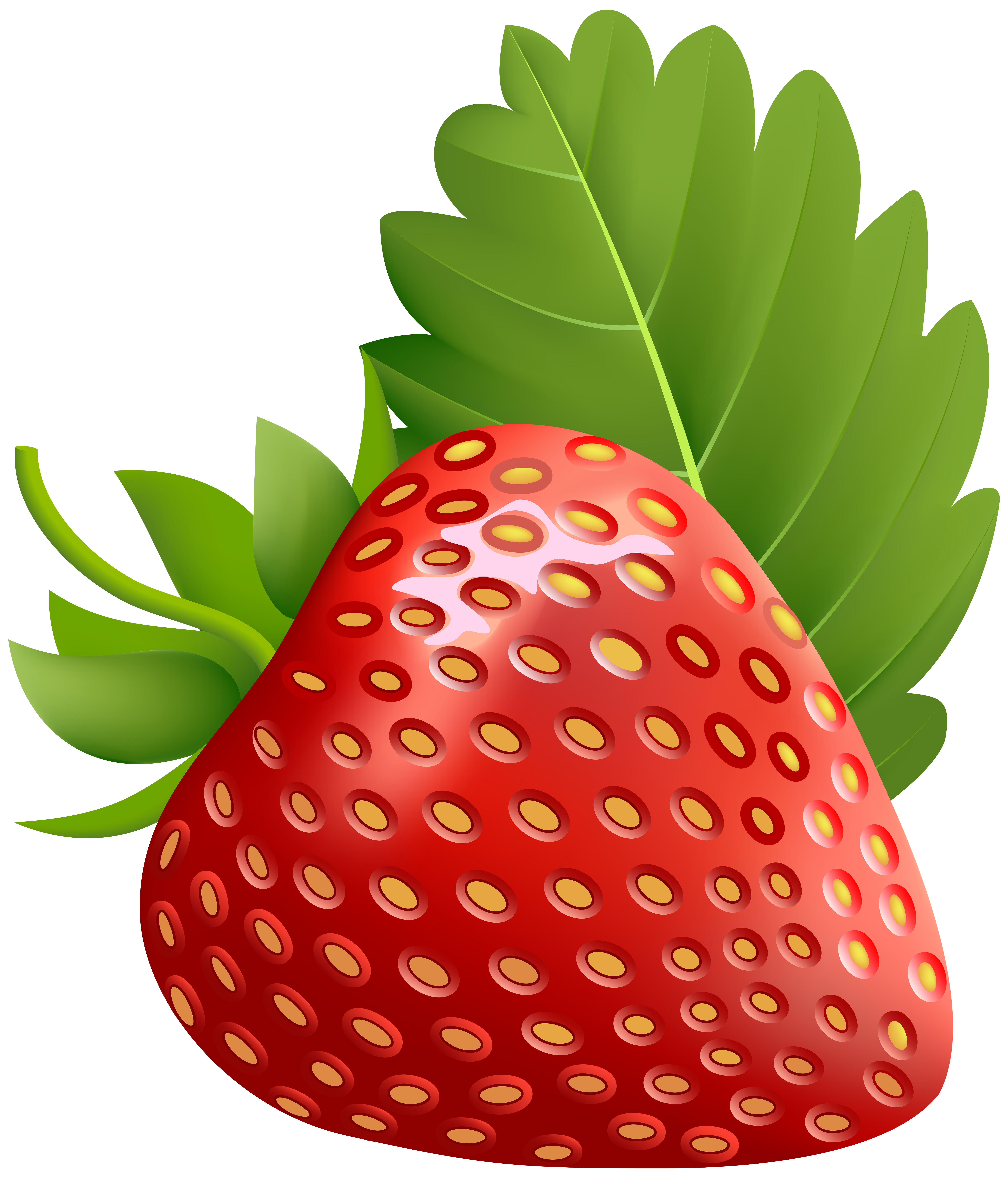 Strawberry flower clipart vector library library Strawberry PNG Transparent Image | Gallery Yopriceville - High ... vector library library