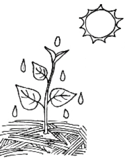 Stretch & grow black and white clipart banner royalty free library Setting up and running a school garden - Teaching ToolKit banner royalty free library