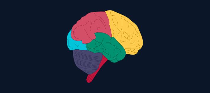 Stuck brain clipart image transparent stock Reprogramming Your Subconscious Mind (Remove Negative ... image transparent stock