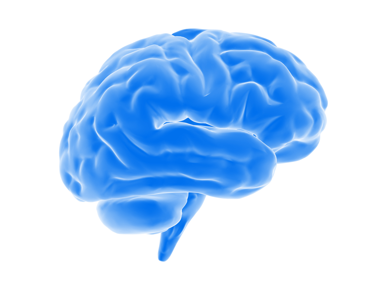 Stuck brain clipart svg transparent library How your Brain Impacts Your Leadership - Charles Stone svg transparent library