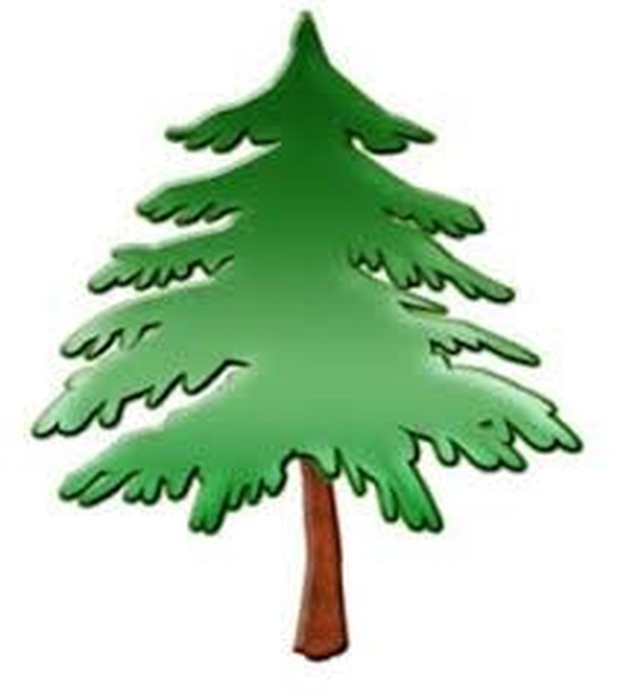 Stylized pine tree clipart png royalty free stock Pine Tree Clipart | Free download best Pine Tree Clipart on ... png royalty free stock