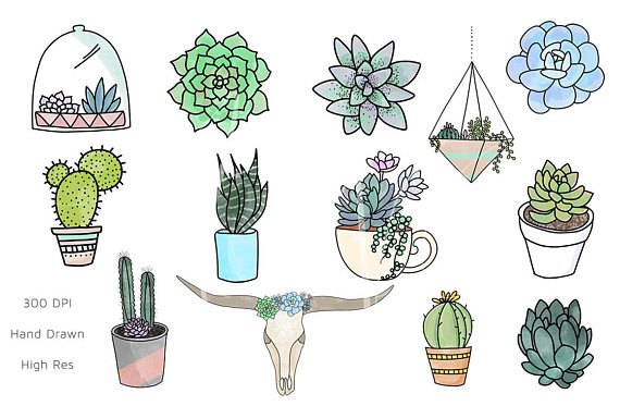 Succulents clipart jpg royalty free download Succulent Clipart / Succulent PNG / Succulents / Clipart ... jpg royalty free download