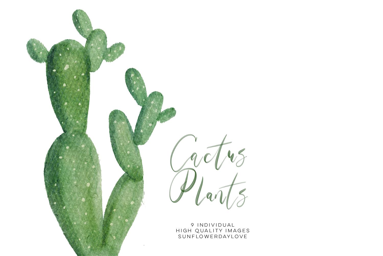 Succilent clipart banner library Watercolor Cactus Plant Clipart Set, Green Natural Botanical Clip Art,  Succulent Cactus clipart, Cacti plants clip art, cactuses clipart set -  Vsual banner library