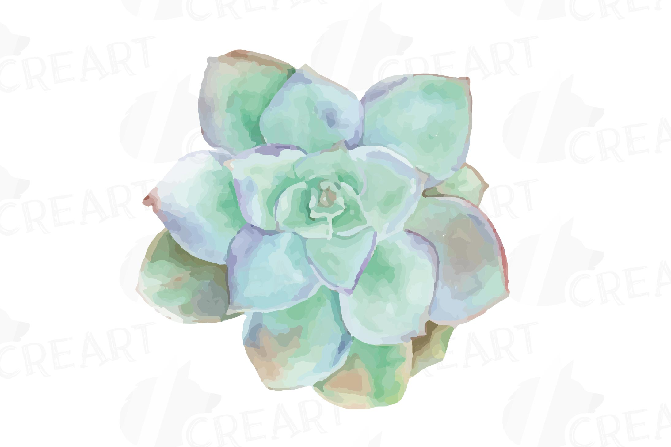 Watercolor succulents clipart picture stock Watercolor cactus and watercolor succulent Clipart pack picture stock