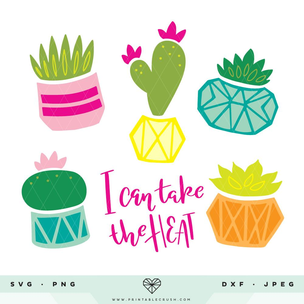 Succulent clipart for cricut vector transparent stock Potted Cacti and Succulents SVG Cut Files vector transparent stock