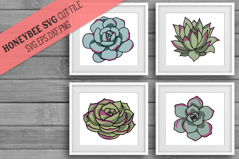 Succulent clipart for cricut svg black and white stock Free Succulent Botanical SVG Bundle Crafter File - Free SVG ... svg black and white stock