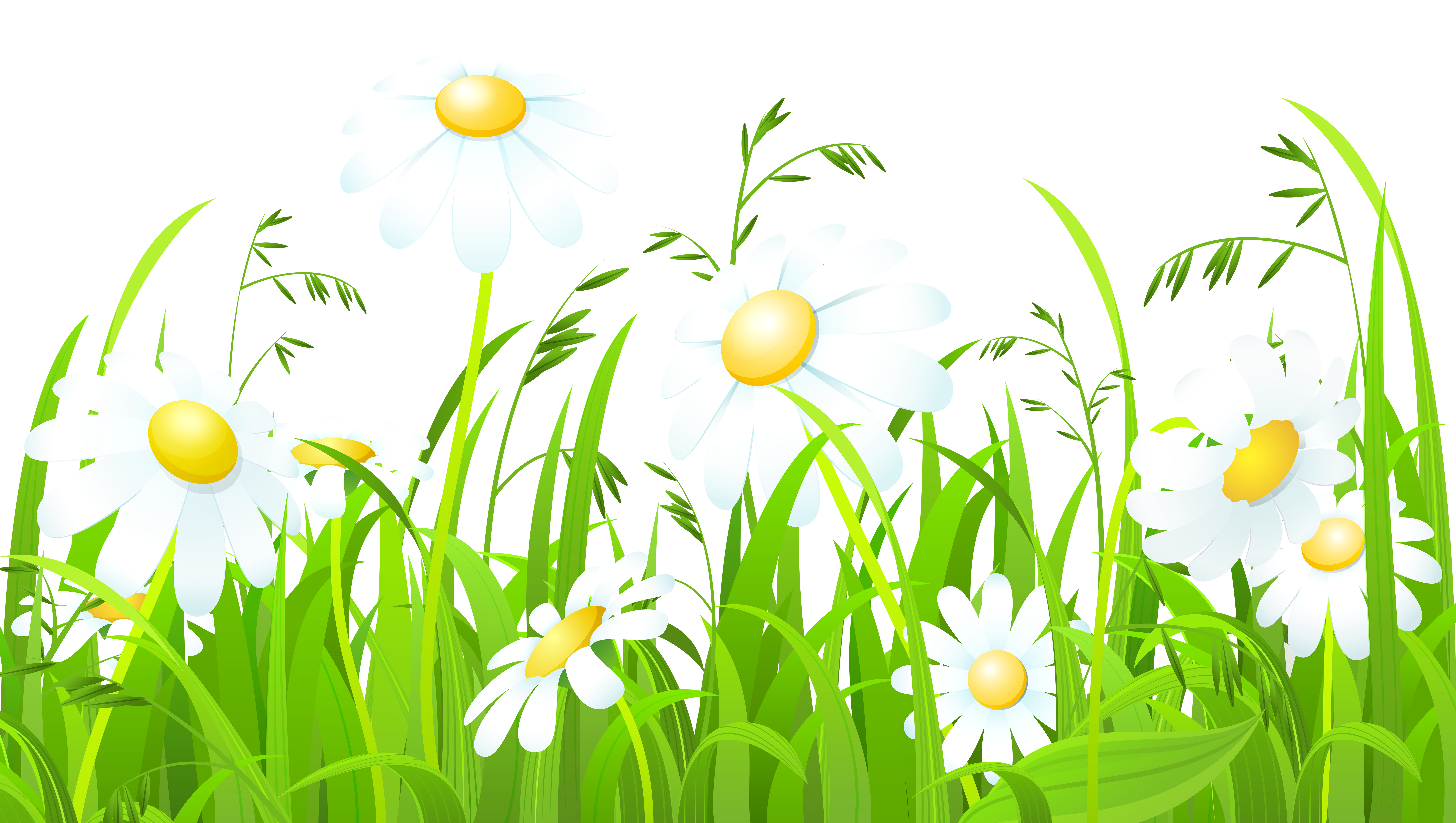 Sun and grass clipart vector royalty free White Flowers and Grass Transparent PNG Clip Art Image ... vector royalty free
