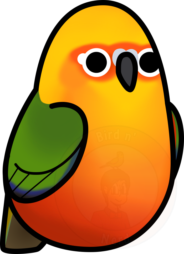 Sun conure clipart png png library library Too Many Birds! - Jenday Conure/Jendaya Parakeet by MaddeMichael on ... png library library
