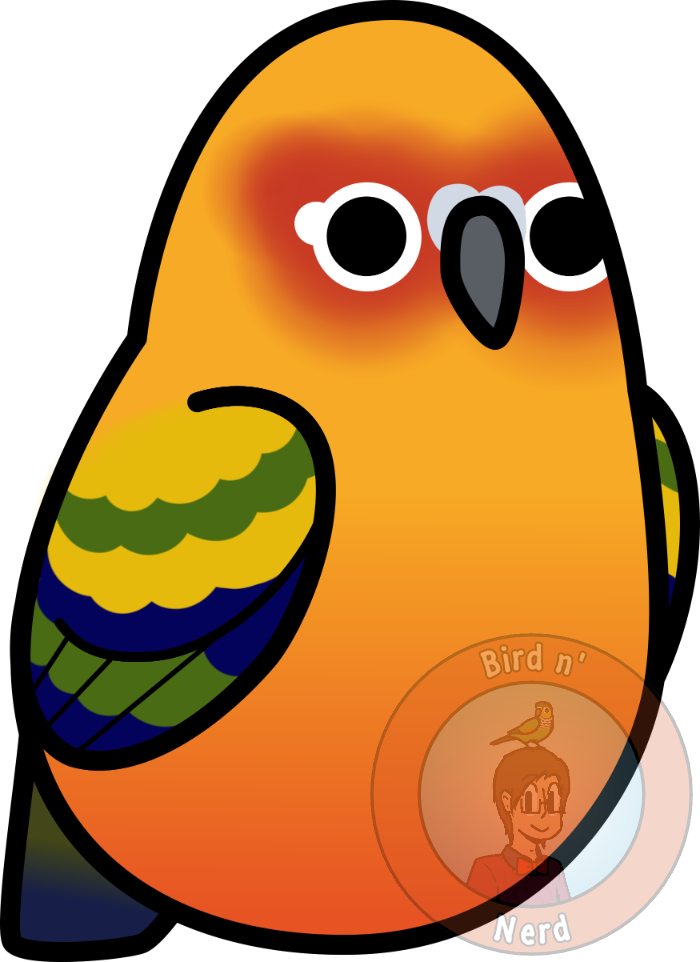 Sun conure clipart png clip art royalty free Too Many Birds! - Sun Conure by MaddeMichael on DeviantArt clip art royalty free