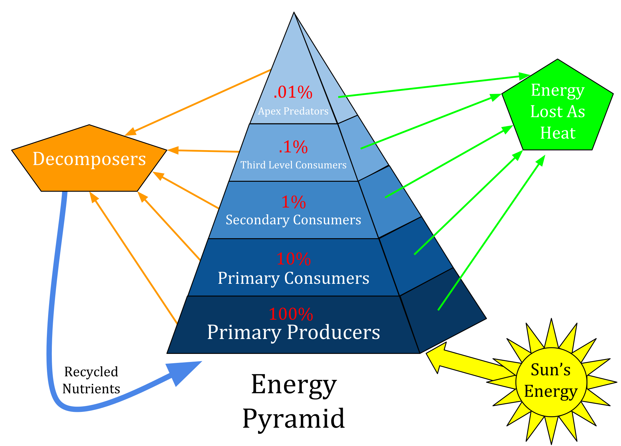 Sun over pyramid clipart clip art transparent download Biology | Ale Jaime's Blog clip art transparent download