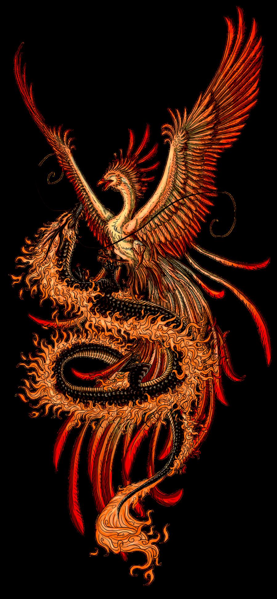 Sun phoenix clipart clipart Phoenix Tattoos PNG Transparent Phoenix Tattoos.PNG Images. | PlusPNG clipart