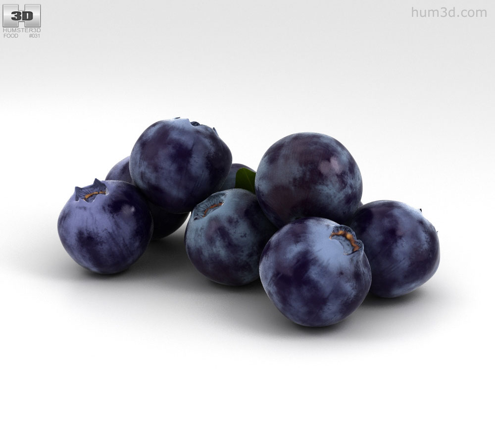 Sunbelt grapes clipart banner transparent Bilberry 3D model banner transparent