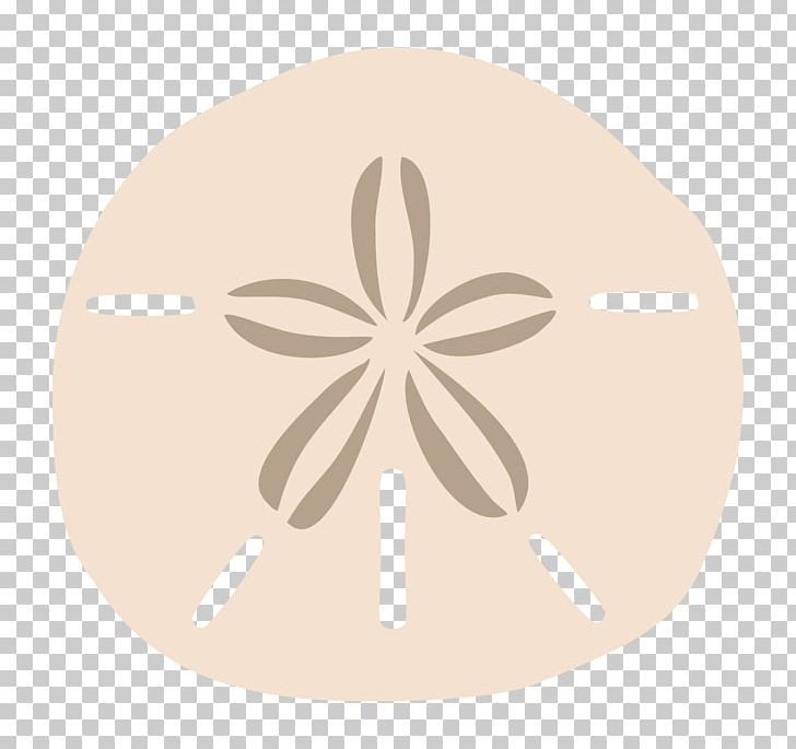 Sundollar clipart graphic transparent stock Sand Dollar Drawing PNG, Clipart, Beige, Circle, Drawing ... graphic transparent stock