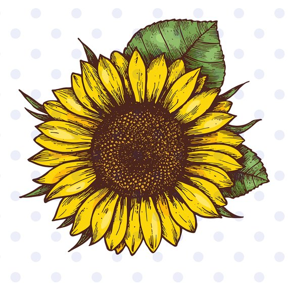 Sunflower clipart vector clipart black and white sunflower, sunflower svg, sunflower clipart, sun svg, flower ... clipart black and white