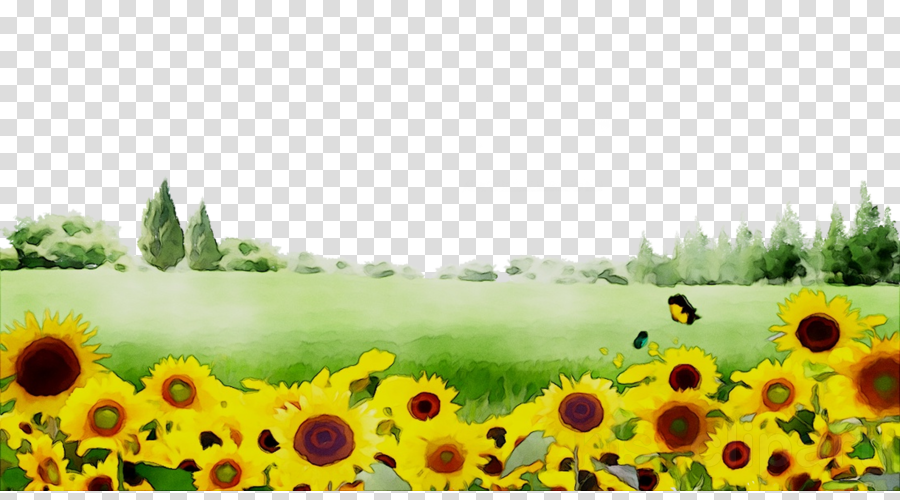 Sunflower background clipart clip art library stock Nature Background clipart - Sunflower, Nature, Flower ... clip art library stock