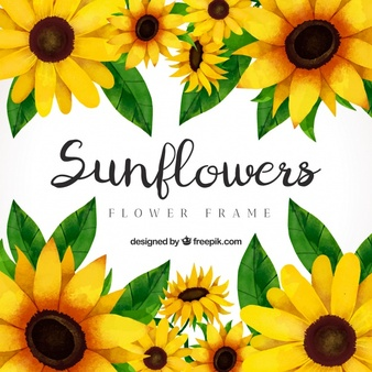 Sunflower clipart vector png library Sunflower Vectors, Photos and PSD files | Free Download png library