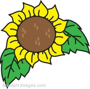 Sunflower blossom clipart image transparent library Sunflowers Clipart Black And White | Clipart Panda - Free ... image transparent library