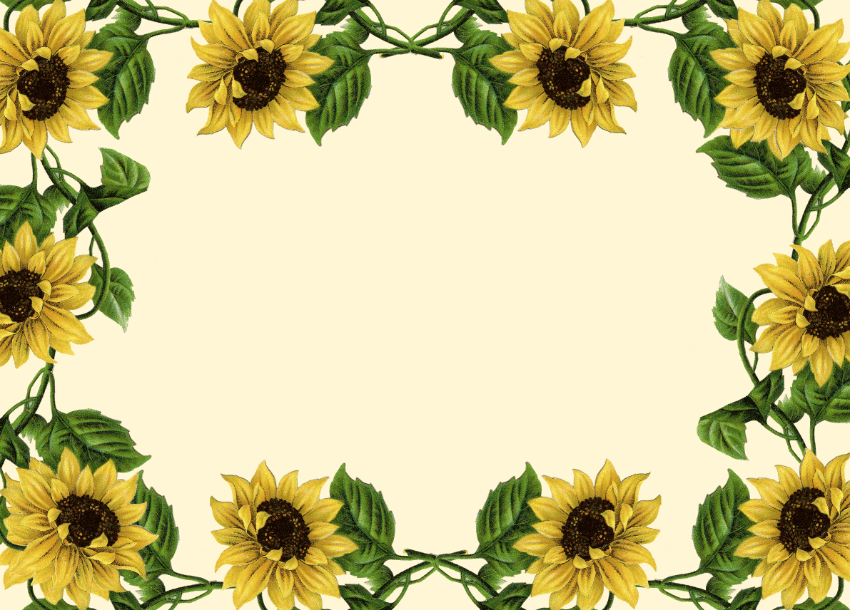 Sunflower cake clipart freeuse library Sunflower Border Clip Art | Sunflower Clip Art Borders ... freeuse library