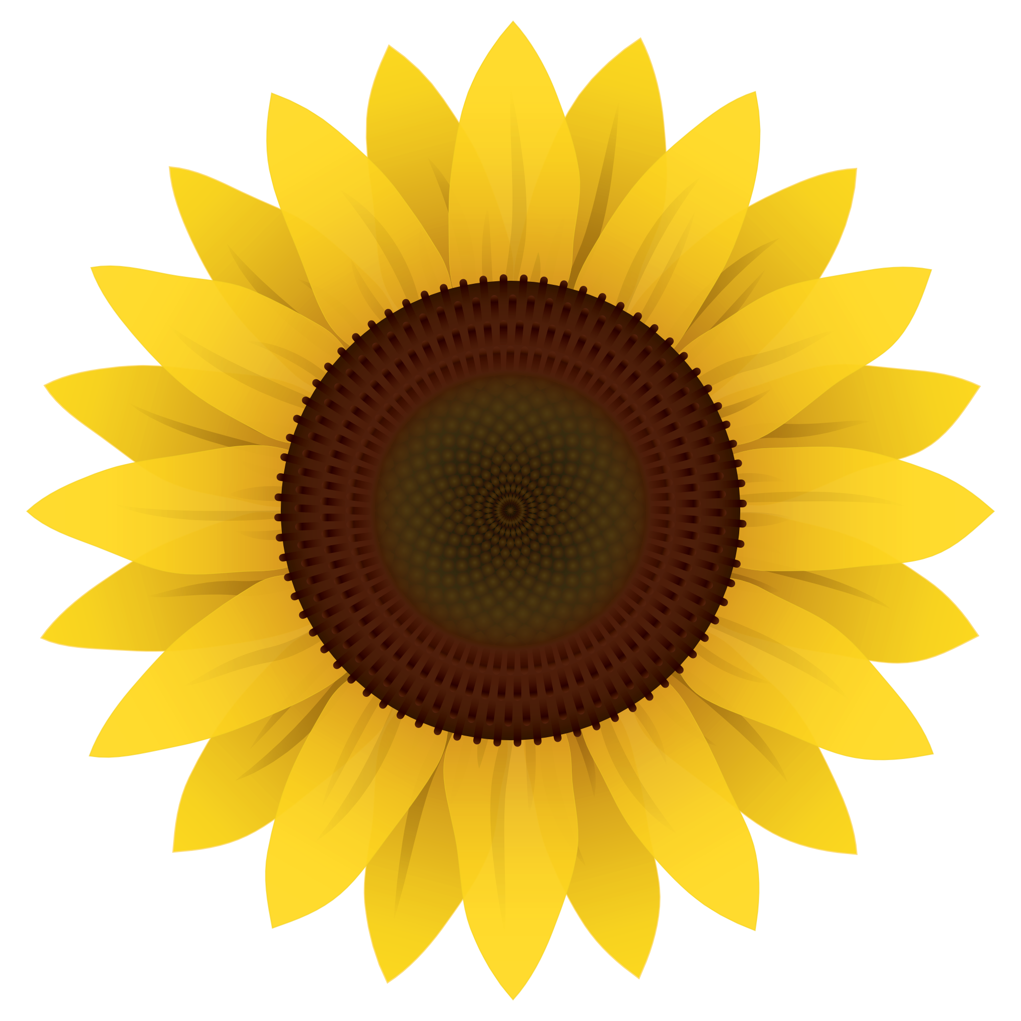 Sunflower clipart vector clip art royalty free stock Sunflower Vector PNG Image - PurePNG | Free transparent CC0 ... clip art royalty free stock
