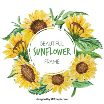 Sunflower clipart vector image transparent Sunflower Vectors, Photos and PSD files | Free Download image transparent